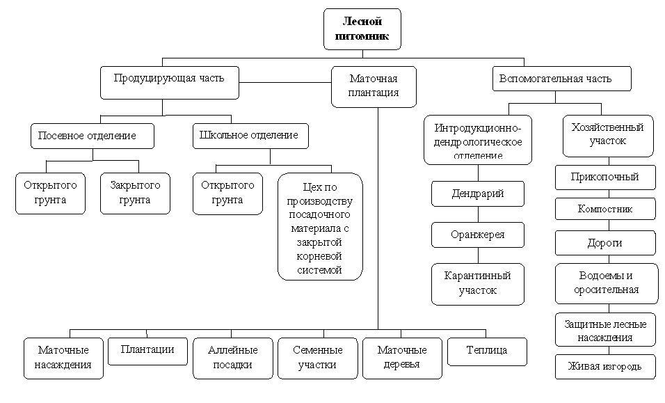 Рисунок 1.1 - Схема структуры