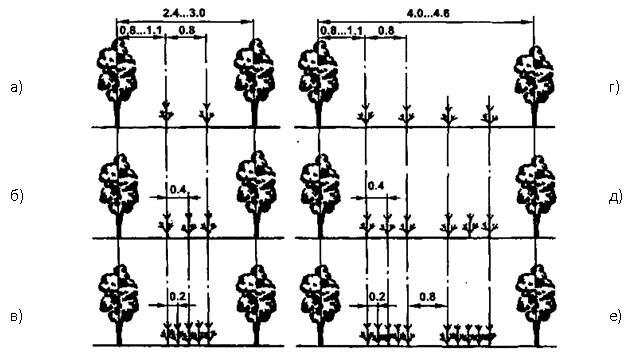 Рисунок 7.1 - Схема размещения