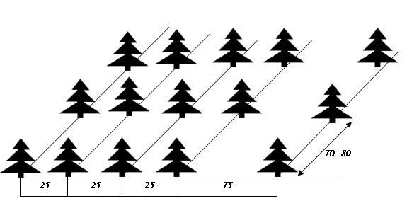 Схема ленточной посадки